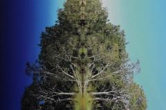 Axis Mundi, 72x112cm, SOLD